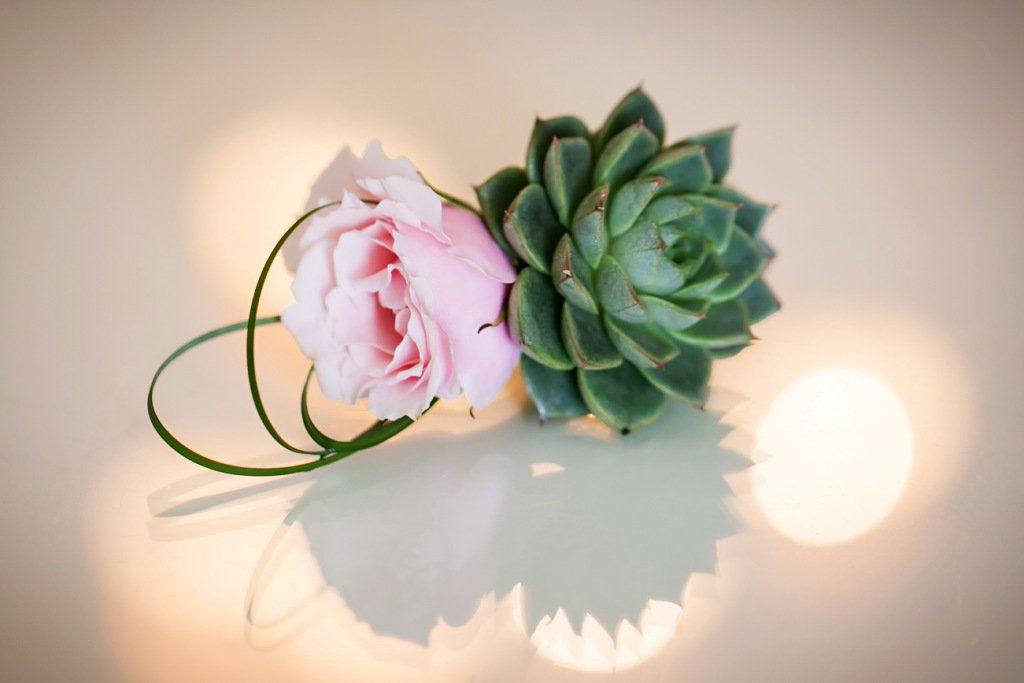 Boutonniere with Succulent and Pink Roses