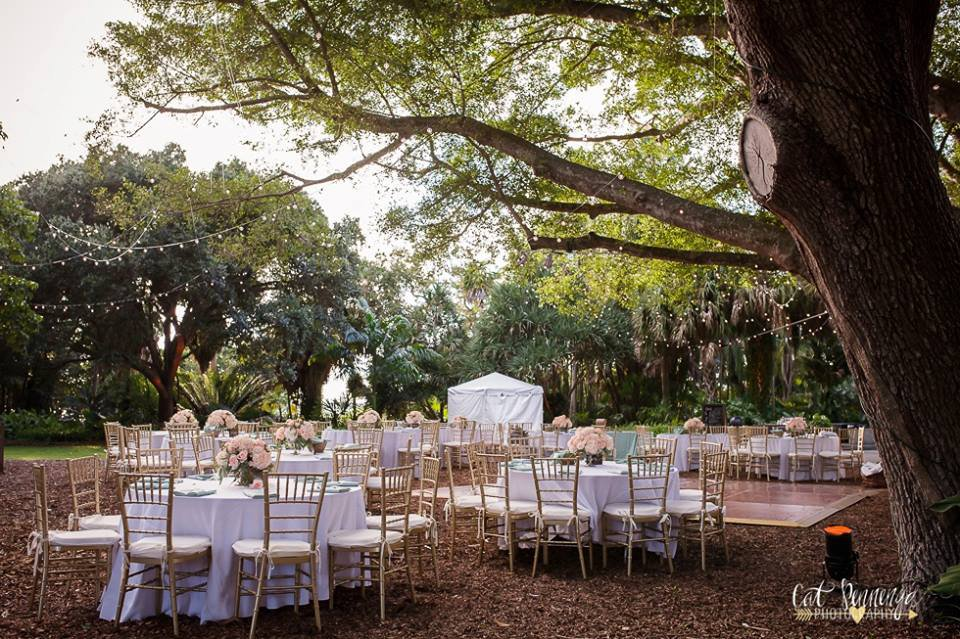 Reception Tables Under Banyan Trees