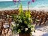 Beautiful tropical arrangement