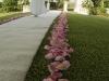pink rose-petal-aisle