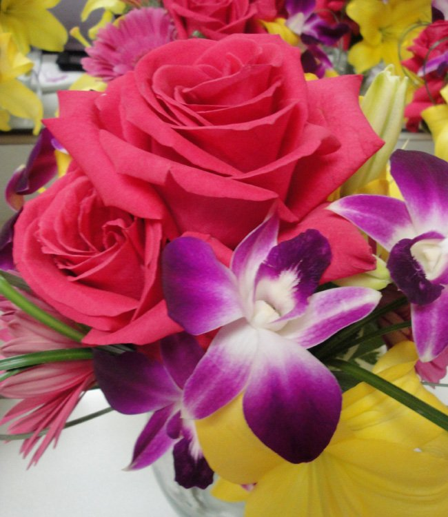 hot-pink-roses-gerbera-bombay-orchids-yellow-lilies
