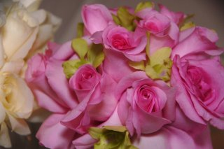 pink-rose-bridesmaids-bouquet