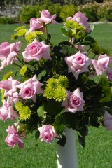 pink-roses-and-green-mums-at-back-of-the-aisle