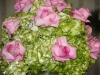 green-hydrangea-and-pink-roses
