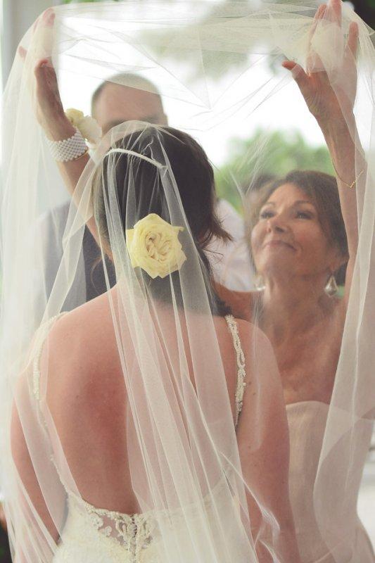 Garden Roses in Bride's Hair