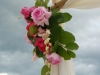 pink-roses-on-bamboo-arch