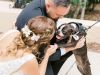 couple-w-dogs-of-honor-