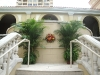 Ritz Carlton-healing-garden-Sarasota -palms