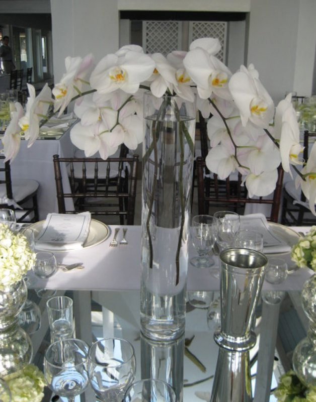 Phalanopsis orchids for wedding table