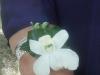 rhinestone-orchid-wrist-corsage