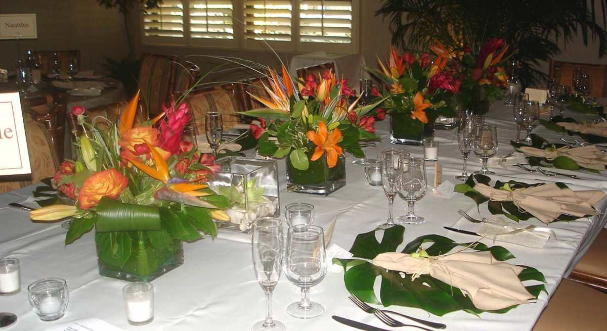 tropical wedding reception decorations siesta key wedding beautiful tropical theme sarasota 8087