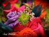 Colorful bridesmaids bouquet