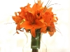 Orange lily bridemaids bouquetsPhotos