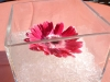 cocktail-table-arrangement-single-gerbera-in-cube
