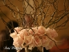saraha-roses-with-curly-willow