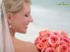 coral-garden-roses