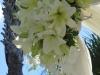 Wedding canopy flowers Ritz Carlton Member Beach Club Sarasota