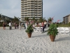 palms-and-orcchids-for-beach-wedding