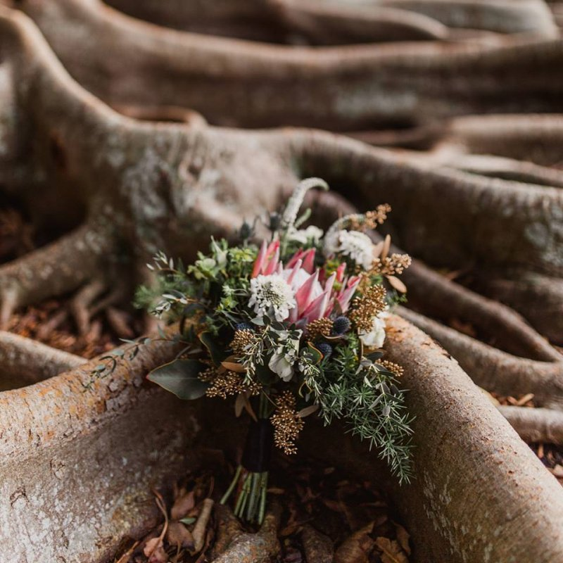 Bridesmaids' Bouquet with Protea, Thistle, Gold Berries, Scabosia, White Veronica, Eucalyptus