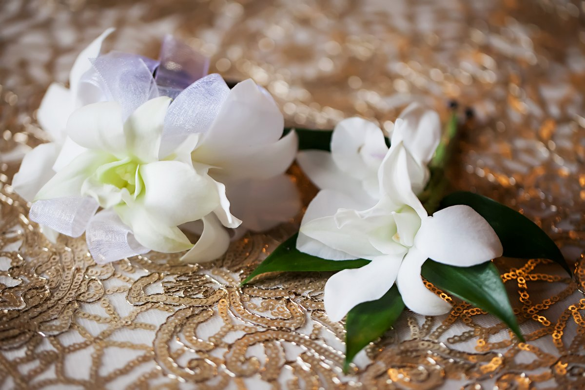 Double Orchid Boutonniere for Groomsmen and Wrist Corsage for Mother of the Bride with Iridescent Band