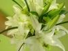 White lily bridal bouquet