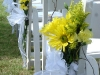 aisle-with-daisies-white sheer-ribbon