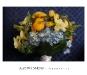 audrey snow photography garden bridal bouquet