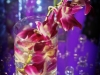 cylinder-with-bombay-orchid