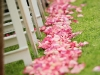 pink-rose-petals-to-line-the-aisle