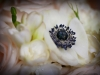 bridal-bouquet-with-white-anemonies