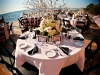 cadzan-with-manzanita-branch-centerpieces